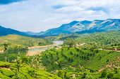 Beautiful Landscape Of The Tea Plantations, Mountain And The River In India, Kerala, Munnar