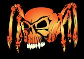 stock photo of indecent  - The skull is represented in the form of a spider - JPG