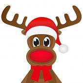 Christmas reindeer in a red scarf