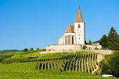 church with vineyard, Hunawihr, Alsace, France