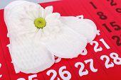 foto of menses  - Sanitary pads and white flower on red calendar background - JPG
