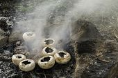 Mushrooms Grilled On A Coals In Nature