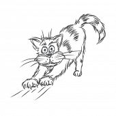 Cat stretching. Vector sketch.