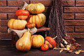 Pumpkins on stool on floor on brick wall background