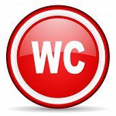 toilet web icon