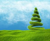 Field of green grass and sky with helix tree.