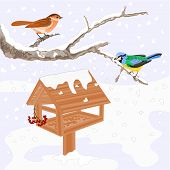 Birds And Feeder Winter Theme Vector