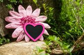Mystical Rockery With A Pink Heart And Imitation Flower