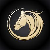 picture of horse head  - Gold horse logo template - JPG