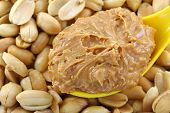image of spooning  - A spoon of creamy crunchy peanut butter on roasted nuts - JPG
