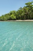 picture of wonderful  - wonderful beach with palms and very clear water - JPG