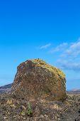 stock photo of volcanic  - Volcanic bomb in front of volcano Montana Colorada in Lanzarote Canary Islands Spain - JPG