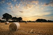 picture of farm landscape  - Beautiful Summer sunset over field of hay bales in countryside landscape - JPG