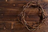 image of humility  - A crown on thorns - JPG