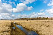 stock photo of dirt road  - nice sprind day on meadow with dirt road - JPG