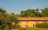 stock photo of oasis  - House on a kibbutz in the oasis in the desert in Israel - JPG