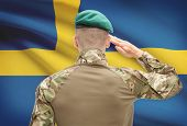 picture of sweden flag  - Soldier in hat facing national flag series  - JPG
