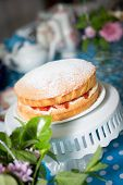 pic of sponge-cake  - Victoria Sponge Cake With Whipped Cream And Strawberries - JPG