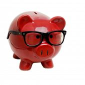 picture of piggy_bank  - Piggy bank manager - JPG
