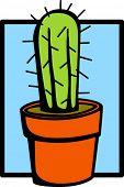 picture of semi-arid  - cactus in a pot - JPG