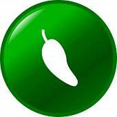 jalapeno pepper button