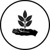 hand and plant symbol