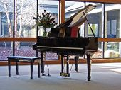 picture of grand piano  - a piano against windows in home parlor - JPG