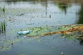 Water Pollution Environmental. Green Plastic Bottles And Garbage In The City River Water. Environmen poster