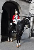 LONDON â?? SEPTEMBER 24: A cavalry trooper is posted outside the Horse Guards on September 24, 2011