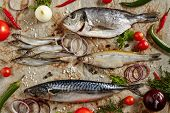 Raw Fish Mix with Vegetables on Rustic Paper Background Top View. Fresh Whole Capelin or Smelt, Mack poster