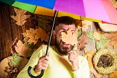 Rainy Weather Forecast Concept. Fall Atmosphere Attributes. Man Bearded Lay On Wooden Background Wit poster
