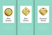 Best Quality Choice Labels Set. Brand Premium Items With Guarantee And Certificate Badges. Recommend poster