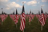 field of flags in Westerville, Ohio