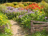 rural retro fences in the country garden