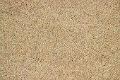 Tiny grains of sand macro close up texture.