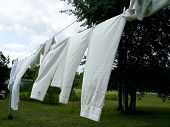 Clothes on the clothes line in the summer