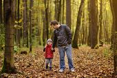 Father And His Toddler Son Walking During The Hiking Activities In Autumn Forest. Active Family Time poster