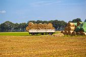 Hay bales on farm land