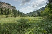 picture of spearfishing  - HDR of Black Hills in South Dakota - JPG
