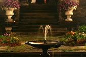 Water Pedestal