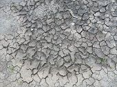 Almost Dry Soil