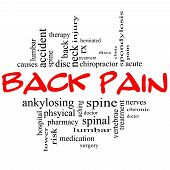 picture of lumbar spine  - Back Pain Word Cloud Concept in black and red letters with great terms such as injury lumbar spine treatment discs and more - JPG