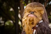 A Star Wars fan dressed as Chewbacca marches in the annual DragonCon parade