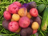 multicolor potatoes in a net bag
