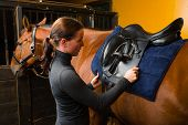 picture of saddle-horse  - Woman saddle a horse in the stall - JPG