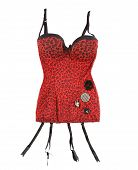 Red Leopard Corset With Suspenders