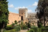 Garden In Rabat, Morocco