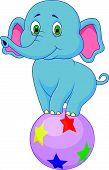 Cute elephant cartoon standing on a colorful ball