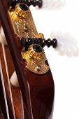 Closeup image of acoustic guitar fingerboard