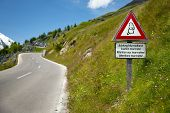 Marmots warning sign by an alpine road